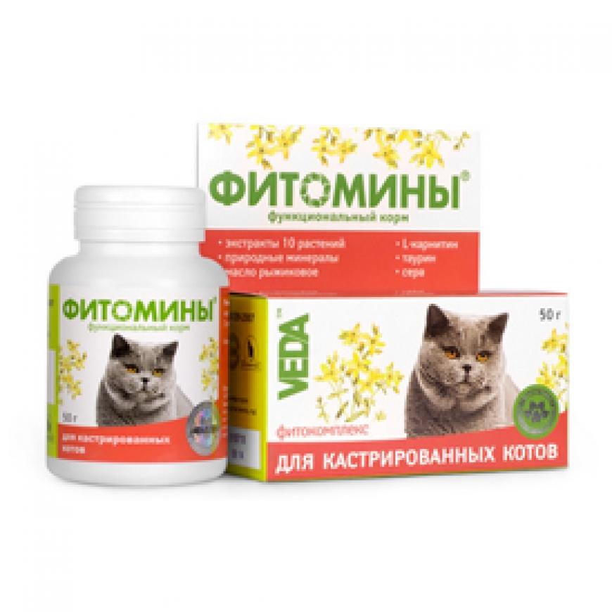 Кормовые добавки для кошек