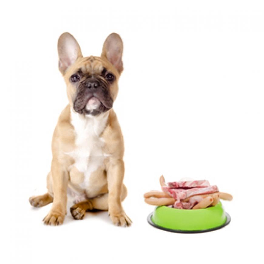 Питание для собак