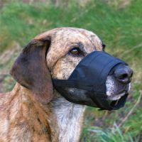 TRIXIE Трикси намордник для собак с сеткой №2 S-M TX-19262