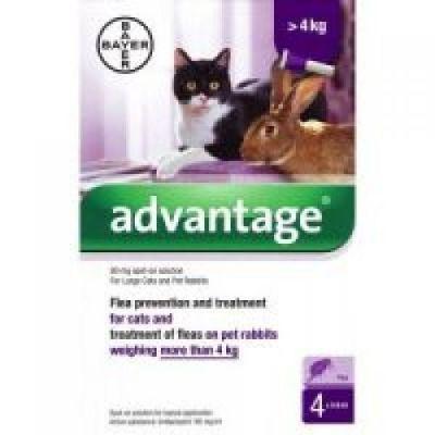 Advantage (Адвантейж) 40 до 4 кг, 80 более 4 кг - средство от блох у кошек и кроликов 1 пипетка