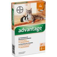 Advantage (Адвантейж) 40 средство от блох у кошек и кроликов весом до 4 кг