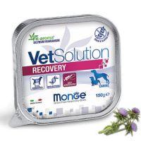 Monge консервы Recovery Монж влажная диета для собак после операций и травм 150 г
