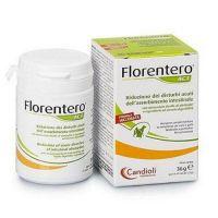 Candioli Florentero ACT Флорентеро АСТ для кошек и собак 30 таблеток, по 1 таб.