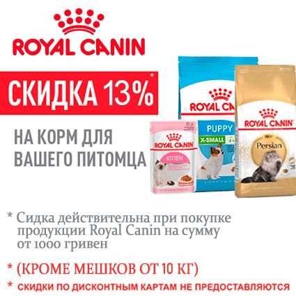 Korm_ROYAL