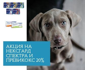 Акция 20%